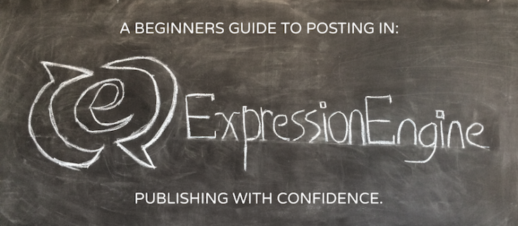 Publishing with confidence - a beginner's guide to posting in ExpressionEngine